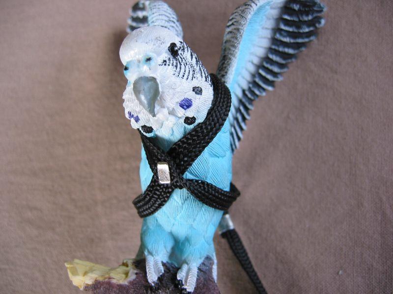 Bird Harness Suit Eclectus To Galah Bird Harness Pet Homes