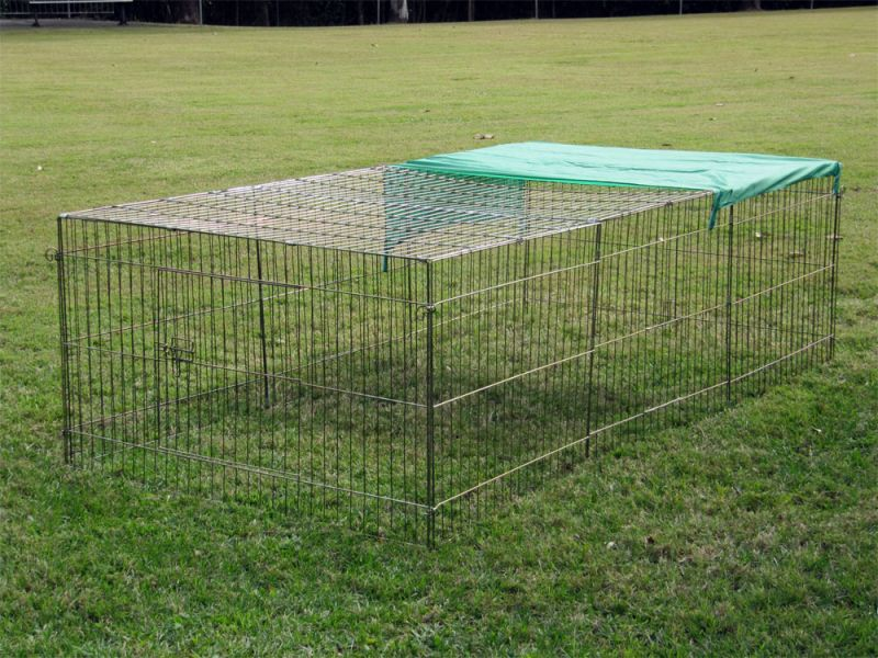 Chicken or guinea pig or rabbit wire run dog pens pet for Wire guinea pig cages