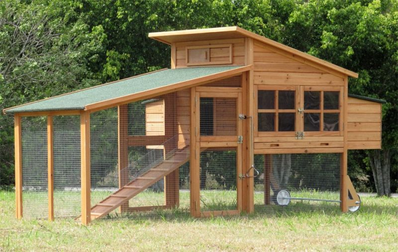 Model g19 6 9 med hen extra large chicken coop hen house for Large chicken coop ideas